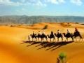 穿越撒哈拉