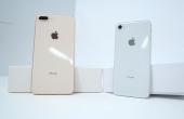 史上最歪iPhone8评测