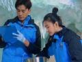 《极速前进中国版第四季片花》第八期 凶残企鹅追咬吓哭王丽坤 元力组合摇摆学步