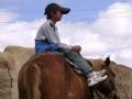 马背上的少年