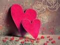 将爱进行到底