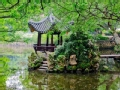 中山公园号·外面的世界