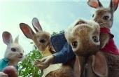 百年《彼得兔》被搬上荧幕