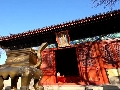 京城古刹 智化寺的秘籍真好听