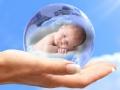 试管胚胎的命运