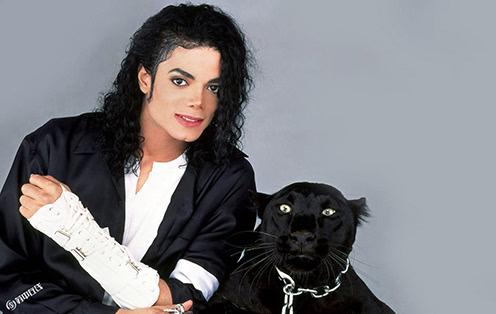 迈克尔杰克逊暴亡之谜