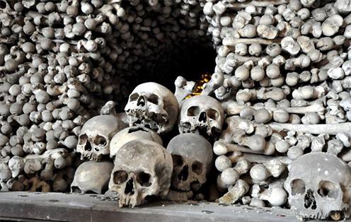 六千年古墓里的人骨拼图