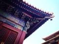 爱阅之城 北京纠错指南