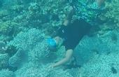 世界最美潜水地塞班岛