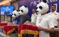 3人戴熊猫面具领50万扫黑奖