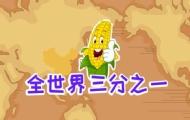 嘟拉百科:飼料之王玉米
