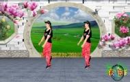 廣場舞《愛上一朵花》教學