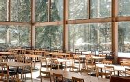 颜值美味并存的森林餐厅