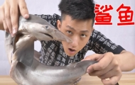 第一次吃鯊魚會感覺如何?
