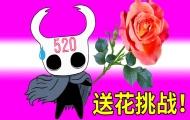 520全世界最娇嫩的花