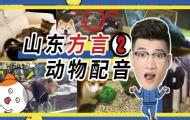 山东王老师爆笑动物配音