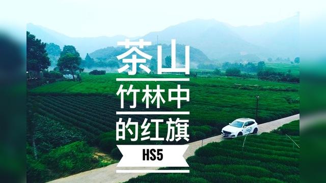 茶山竹林中的紅旗HS5