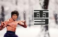 武術家李小龍對戰熊貓
