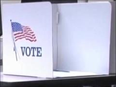 美国纽约州取消6月23日总统初选