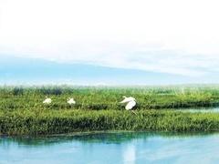 洪泽湖奇景之谜,古城重现还是海市蜃楼?