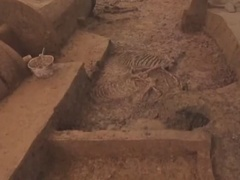 古墓里的历史真相,神秘部落消失之谜