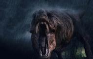 神秘恐龙开启致命猎杀